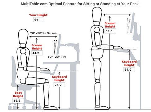Standing and Sitting Desk Posture